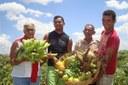 Agricultura familiar é tema de ciclo de debates na ALMG