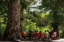 Territórios quilombolas serão incluídos em cadastro ambiental